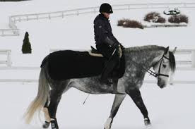 Do's and Don'ts for Winter Horse Riding