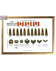 A3 Ranks of the British Army Poster