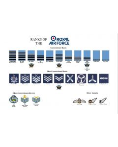 A3 Ranks of the Royal Air Force RAF Poster