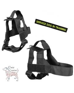 Onie Canine Search Dog Harness - 38mm Strap
